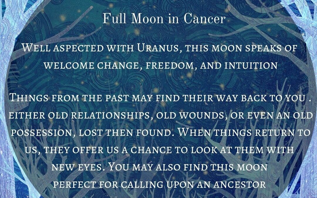 The 13th Moon of 2020. What Will it Mean for You?